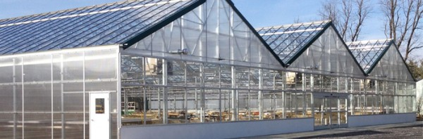 15,000 square foot greenhouse built in 2013 at Holmquest Farms in Hudson NY